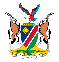 Republic of Namibia Flag