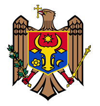 Republic of Moldova Flag